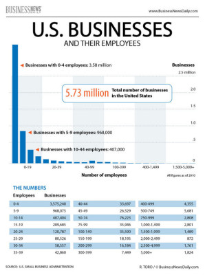 Not a Real Business - Businesses and employees infographic