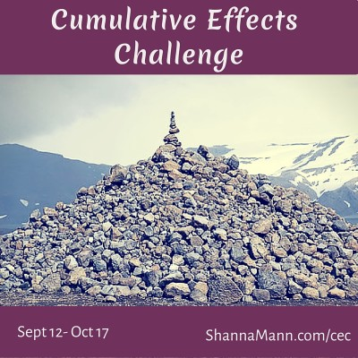 Culmlative Effects Challenge