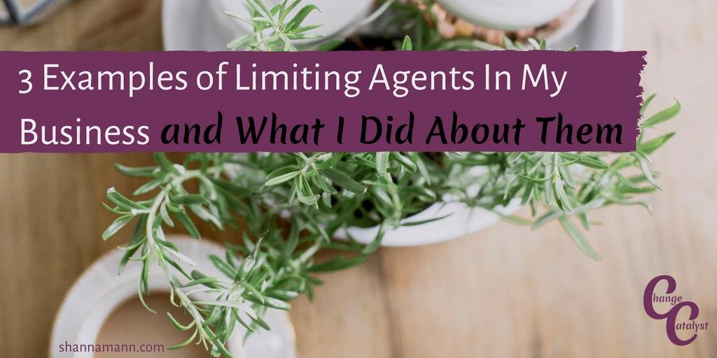 3 Examples of Limiting Agents In My Business and What I Did About Them