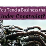How Can You Tend a Business That Will Thrive Under Constraint?
