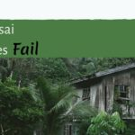 How Bonsai Businesses Fail